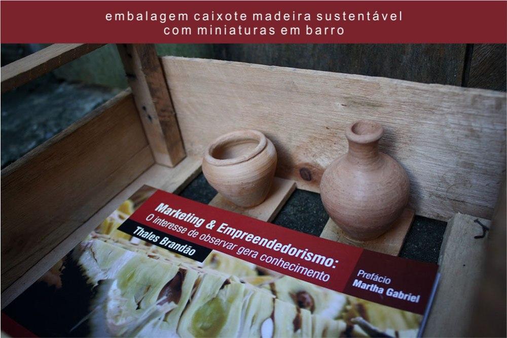 Livro Thales Brandão | Embalagem Caixote